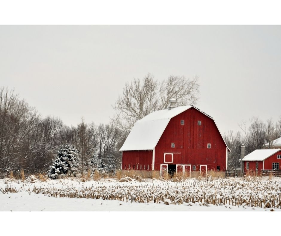 Why are barns red? Don't know? Meet Mr. John Rouse. John knows why barns are red and many more fascinating facts about farms and barns.